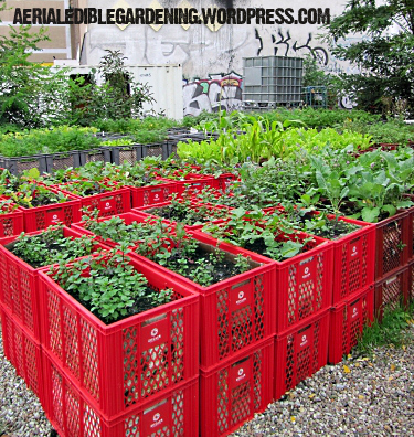 10 DIY Raised Bed Garden Designs and Ideas - Mom with a PREP Raised Vegetable Garden Design Ideas Hay Bails on vegetable garden fence ideas, raised garden on hill, vegetable garden trellis ideas, raised garden fence design, raised garden with fountain, best vegetable container ideas, raised garden wall ideas, raised vegetable beds, small garden ideas, vegetables in flower garden ideas, raised vegetable gardens for beginners, landscape design ideas, raised container gardens ideas, flower bed design ideas, cute vegetable garden ideas, garden beds on sloped backyards ideas, landscape vegetable ideas, raised garden planter boxes ideas, raised veggie garden ideas, cool fall garden ideas,