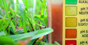 results using a soil ph tester