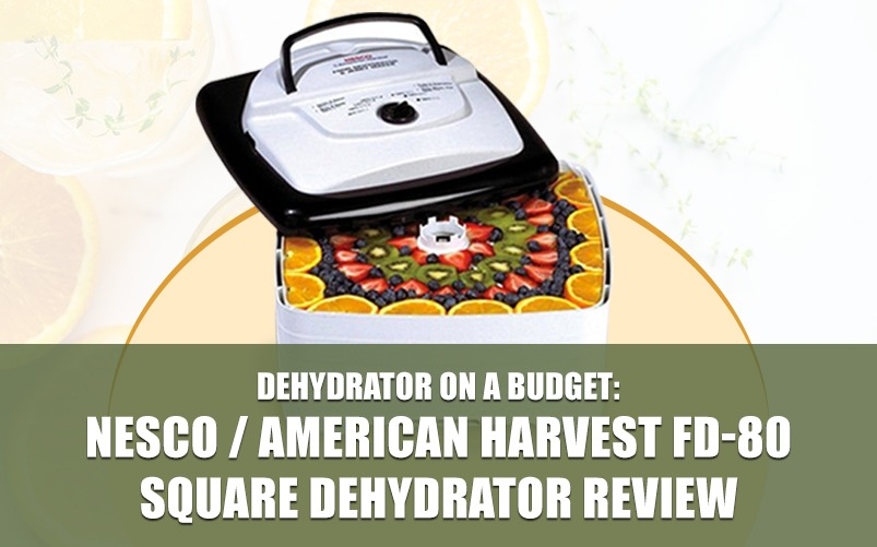 Food Dehydrator_Featured Image