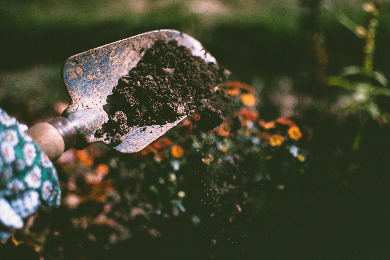 shovel with soil