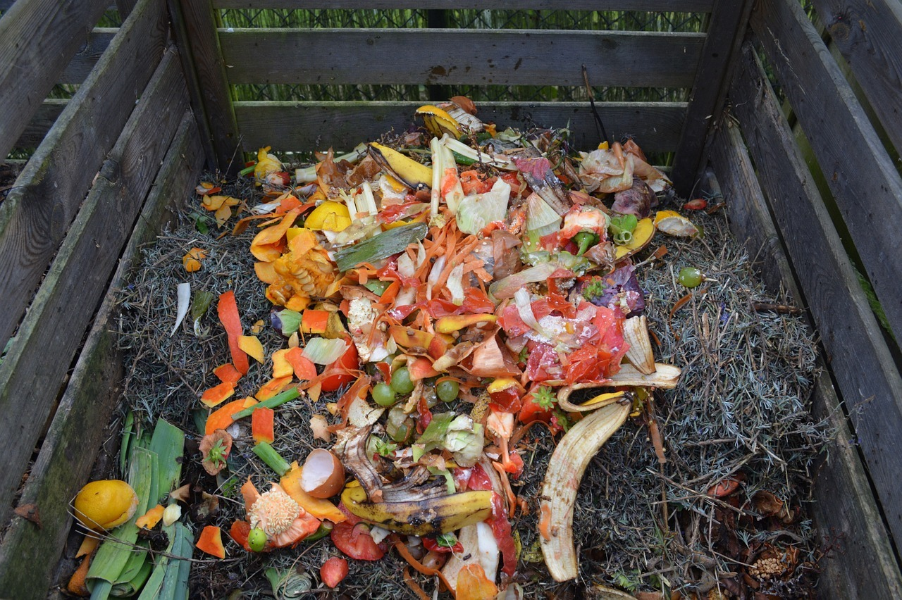 compost bin filled with grass clippings and fruit peelings