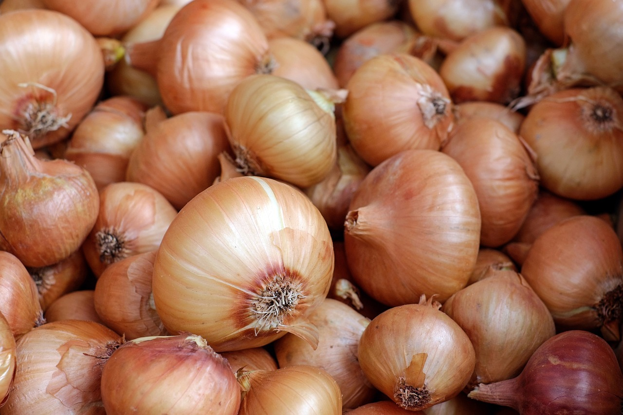 light red onions
