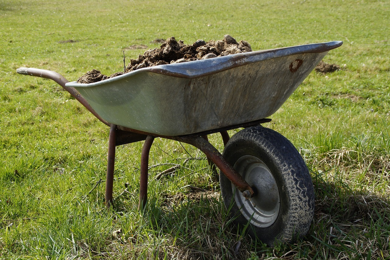 wheelbarrow full of manure