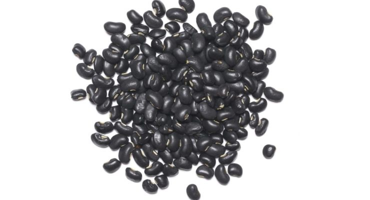 best emergency food black turtle beans on a white background